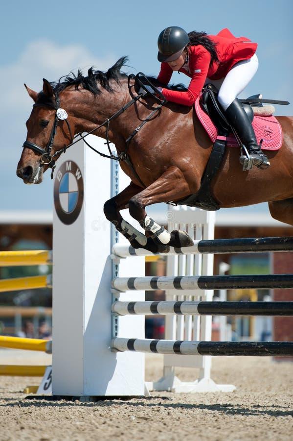 Concorrenza di salto in Pezinok, Slovacchia del cavallo fotografie stock