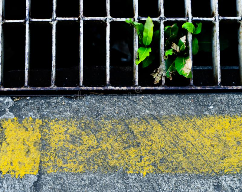 concrete floor and Drainage with yellow line royalty free stock image