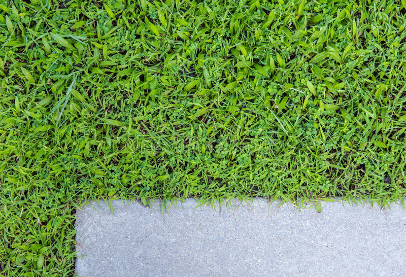 Concrete floor and grass. Background stock image