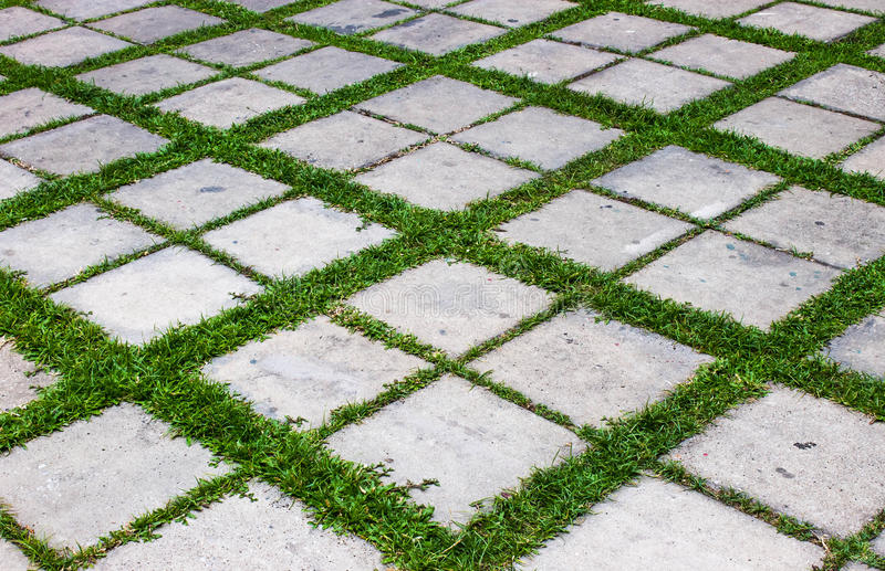Concrete With Grass Floor Stock Photo Image Of Gray