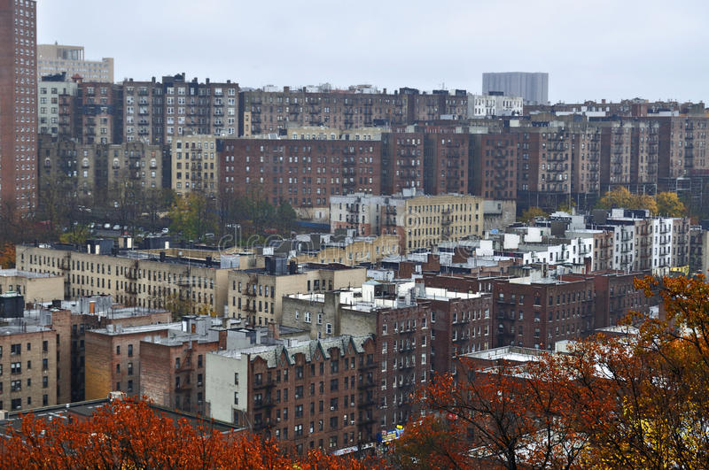 Concrete Jungle (Harlem, New York) royalty free stock images