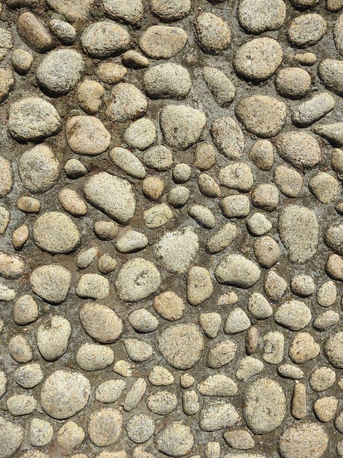 Concrete muur met kiezelstenen stock afbeelding