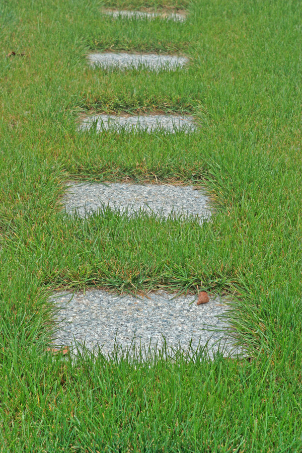 Download Concrete Pavers In Tall Grass Stock Photo - Image: 3161220
