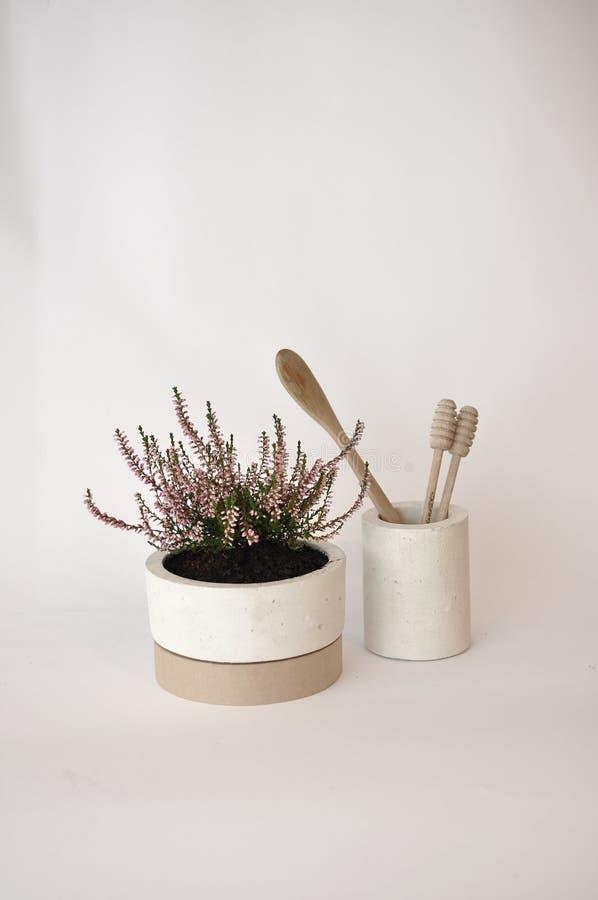 Concrete planter pot studio royalty free stock photo