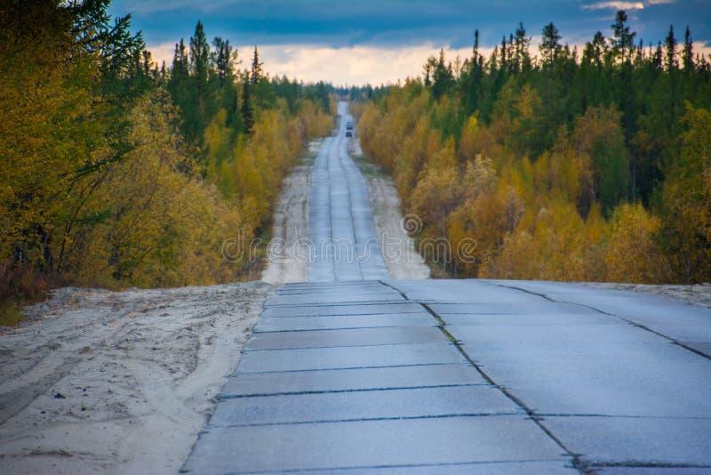 The concrete road above above arctic circle. Yamal. Arctic landscape. Nature stock photo