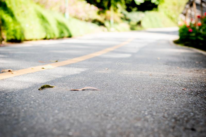 Concrete road heading straight ahead and natural background.  royalty free stock photo