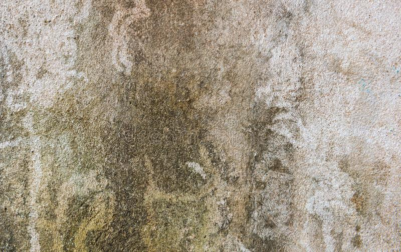 Concrete rustic wall background with dirt dry moss stock images