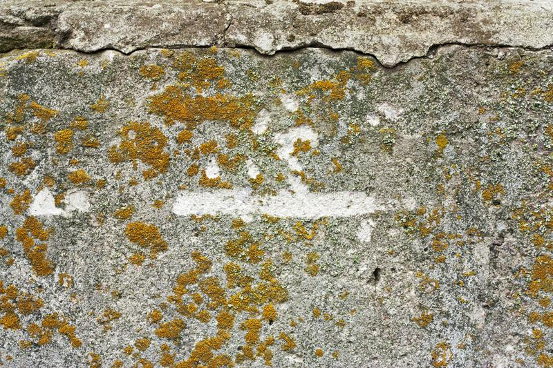 Concrete wall fragment. Old dirty cement texture with defects. Grunge surface with cracks and weathered.  stock image