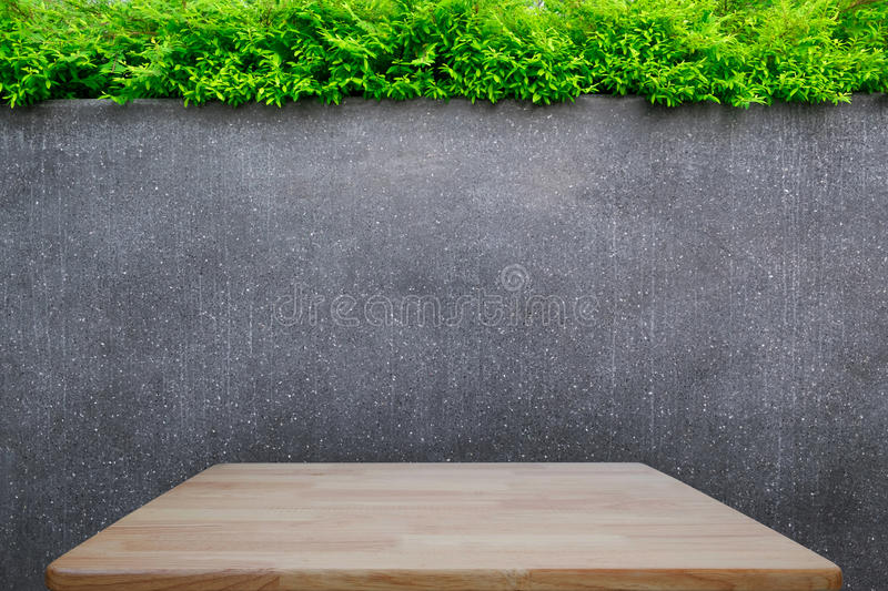 Concrete wall or marble wall and wooden floor or wooden table with ornamental plants or ivy or garden tree. Concrete wall or marble wall and wooden floor or stock photography