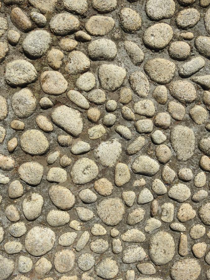 Concrete wall with pebbles stock image