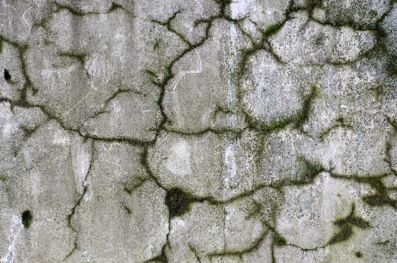 Download Concrete walls stock photo. Image of cement, detail, damaged - 25622992