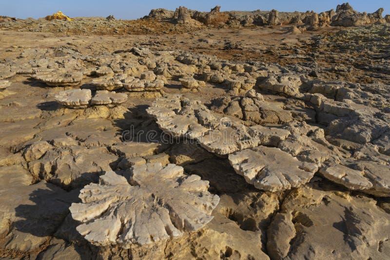 Concreties van zoute rotsen in Dallol in de Danakil-Depressie in Ethiopi?, Afrika royalty-vrije stock fotografie