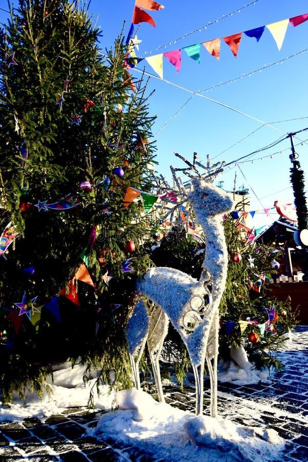 Concurrence d'hiver photographie stock libre de droits