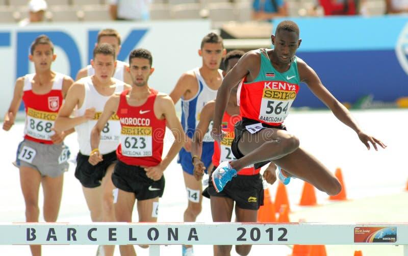 Concurrenten van 3000m steeplechase stock afbeeldingen