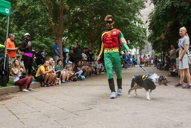 Concurrents portant Batman et escroc de Robin Costumes Participate In Doggy image libre de droits