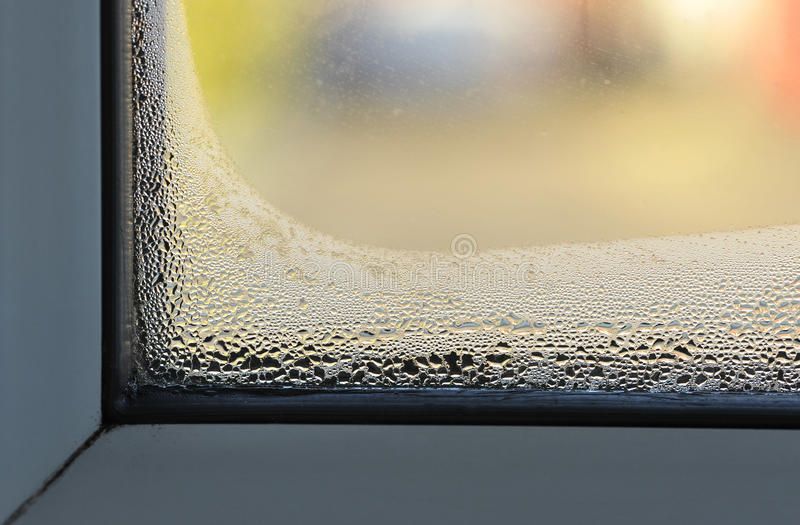 Download Condensation stock photo. Image of damp, winter, window - 84823814