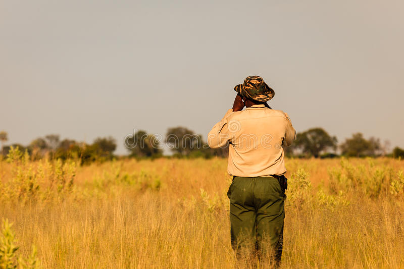 Condições de verificações de Safari Guide antes de viajar para a frente foto de stock
