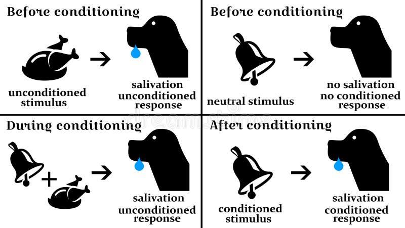 condicionamiento ilustración del vector