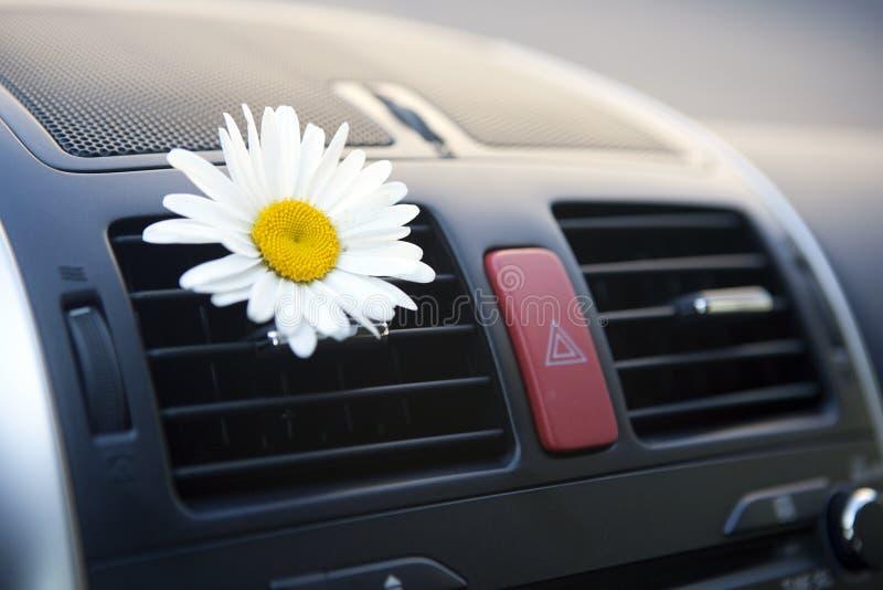 Condicionamiento del coche fotos de archivo libres de regalías