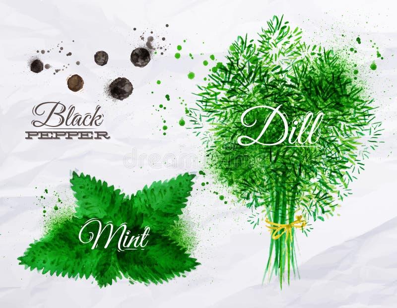 Condimenta la pimienta negra de la acuarela de las hierbas, menta, eneldo stock de ilustración