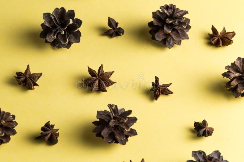 Condimentación y carminatives Medicina china tradicional fotos de archivo