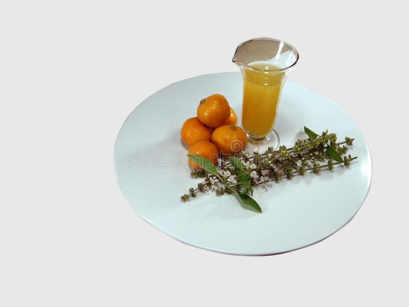 Condimenti freschi di peperoni tropicali immagini stock libere da diritti