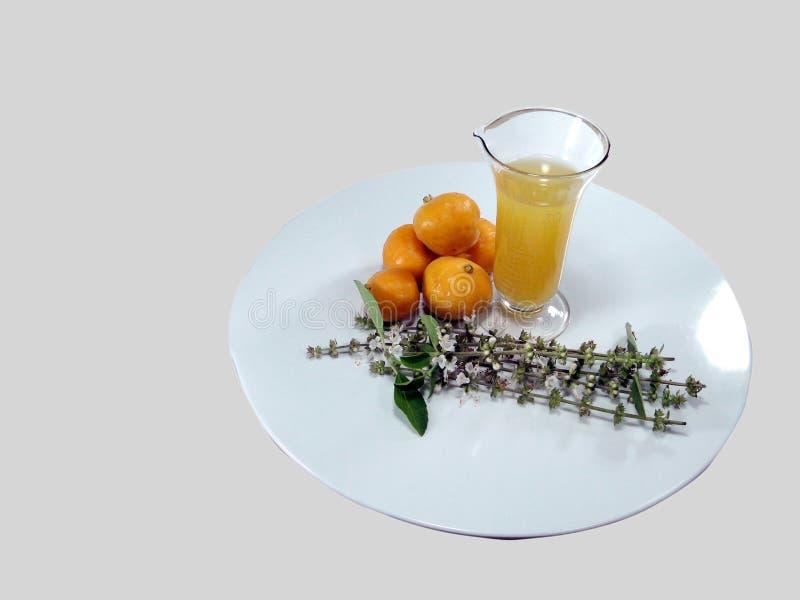 Condimenti freschi di peperoni tropicali fotografia stock libera da diritti