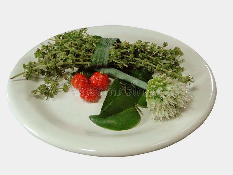 Condimenti freschi di peperoni tropicali fotografia stock