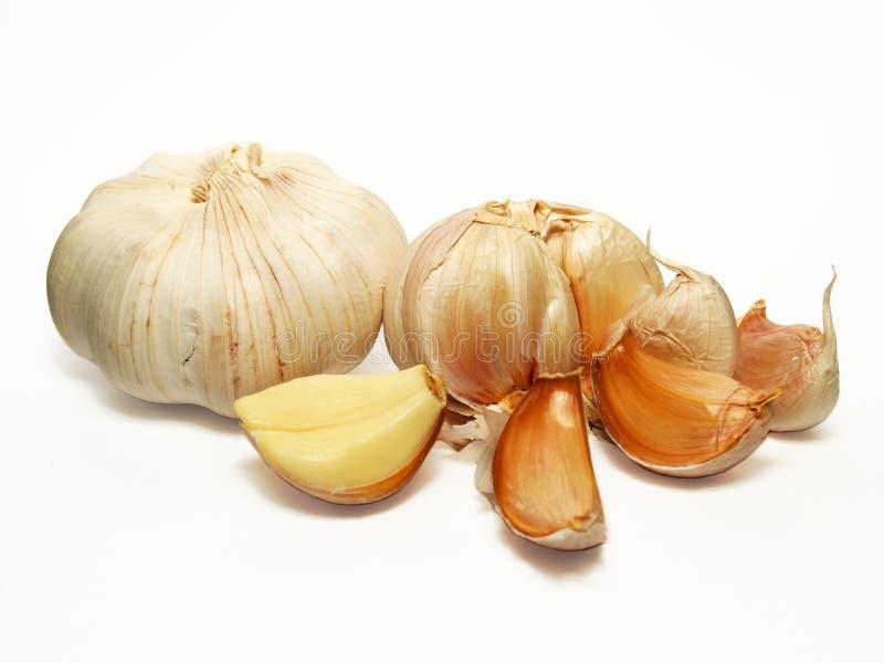 Condimento del aglio immagini stock