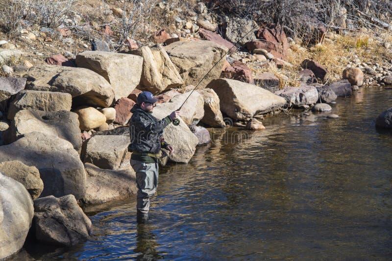 Condizione del pescatore nella pesca con la mosca del fiume di Poudre in Colorado fotografia stock libera da diritti