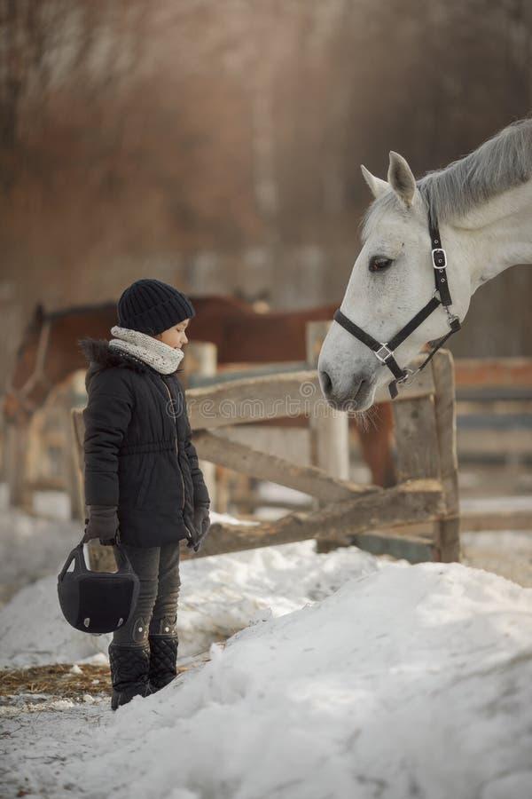 Condizione dell'adolescente vicino al cavallo bianco in un recinto chiuso fotografia stock