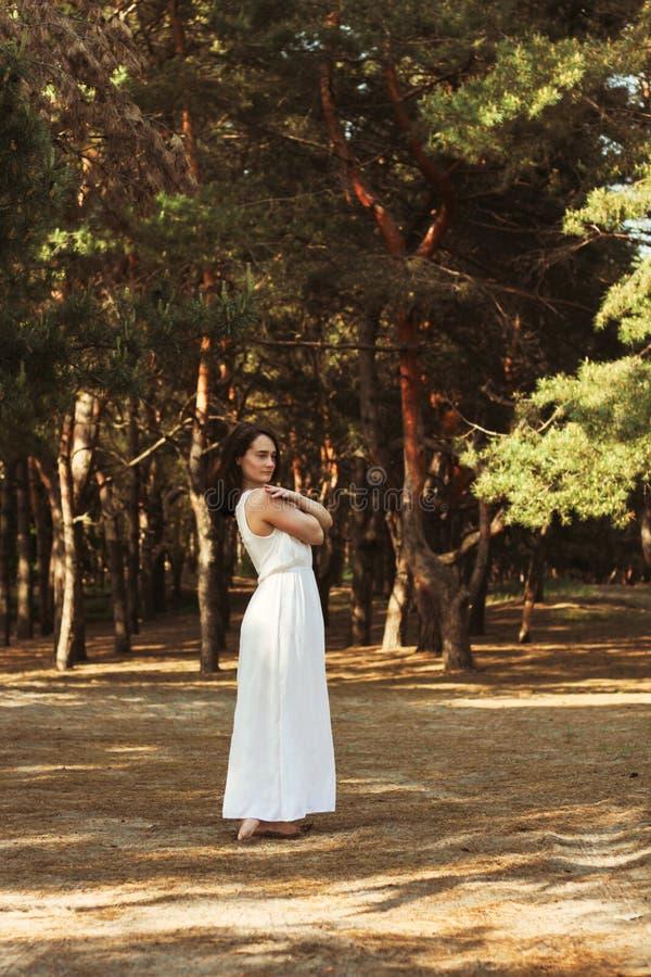 Condizione della donna sul ramo nella foresta, vestito bianco del pino fotografia stock