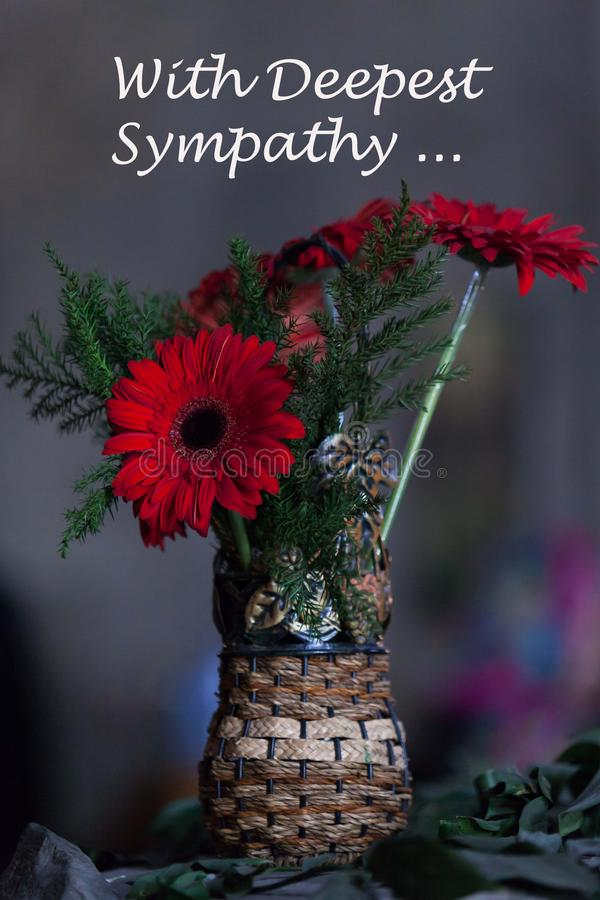 Condolence flower sympathy card. Remembrance day Mourning memorial funeral peace crematorium concept. Close up vase gerbera on royalty free stock photo