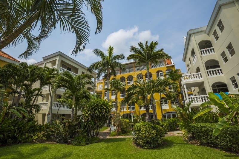 Condomínios coloridos do recurso com palmeiras fotos de stock royalty free