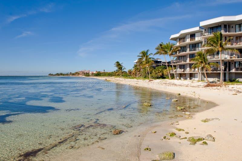 Condominio sulla parte anteriore della spiaggia dell'oceano fotografia stock libera da diritti
