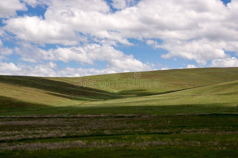 Condon-Hügel stockfoto