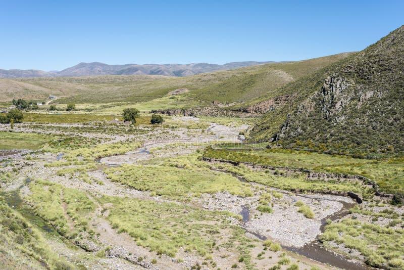 Condor, Quebrada DE Humahuaca, Jujuy, Argentinië royalty-vrije stock foto