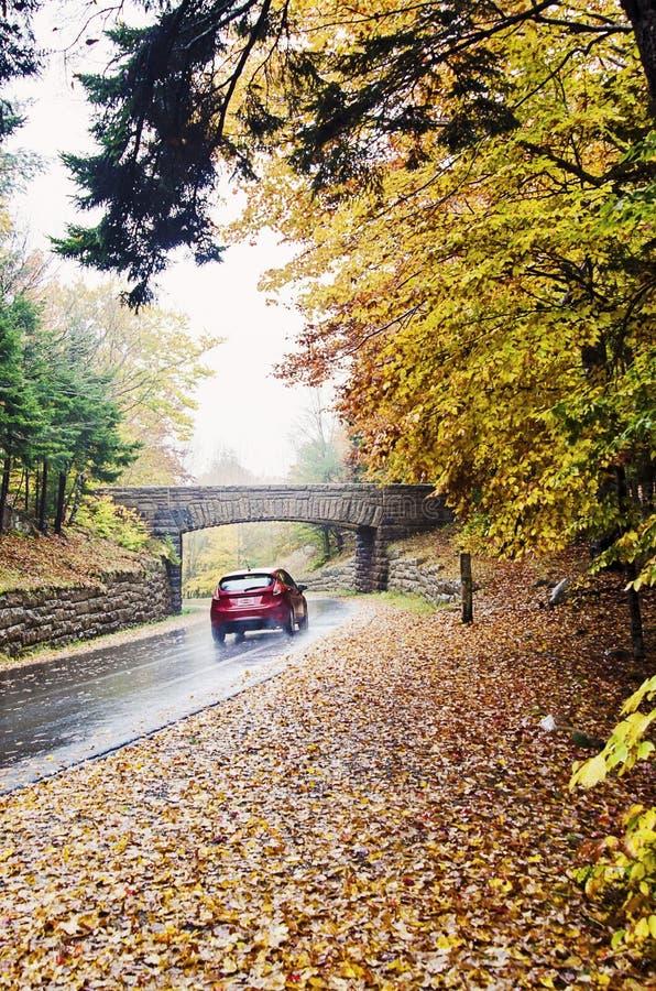 Condução de carro na estrada curvada molhada no parque nacional do Acadia foto de stock royalty free