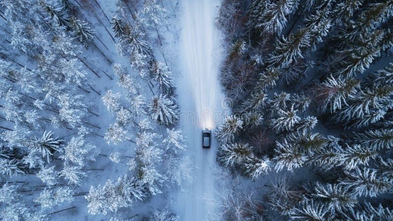 Condução de carro na estrada nevado com a opinião da floresta da noite do ar fotos de stock royalty free