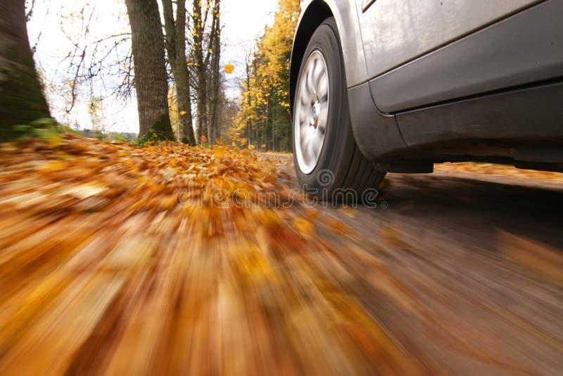 Condução de carro na estrada secundária imagens de stock royalty free