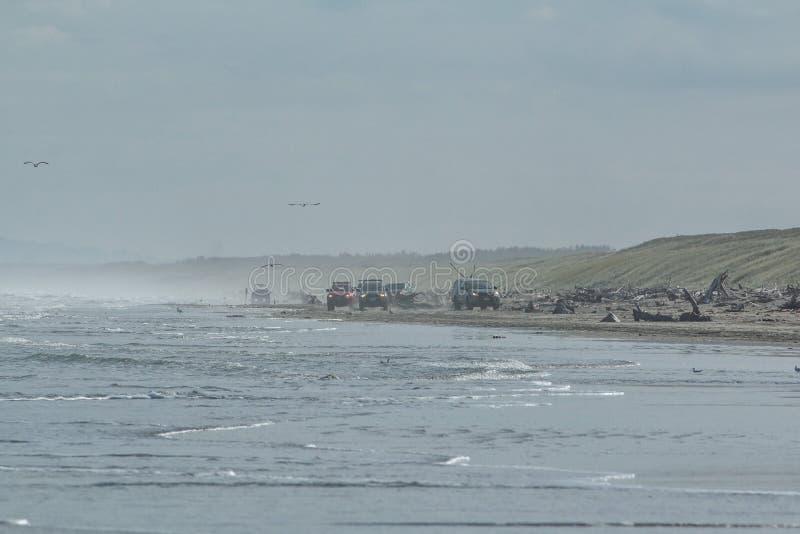Condução de quatro rodas na praia de Himitangi imagens de stock royalty free