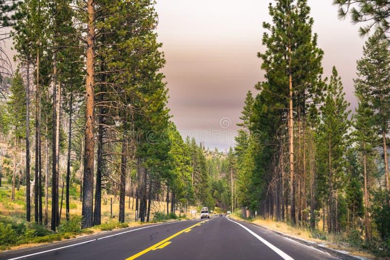 Conducción a través del parque nacional de Yosemite; cielo cubierto por el humo fotos de archivo libres de regalías