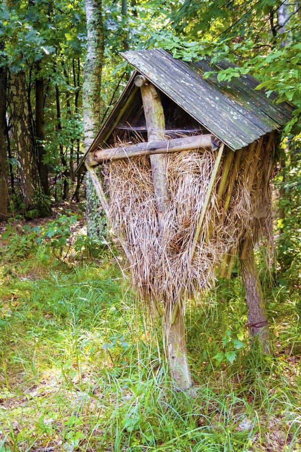 Conducteur en bois pour les animaux sauvages avec hé dans la forêt d'automne images libres de droits