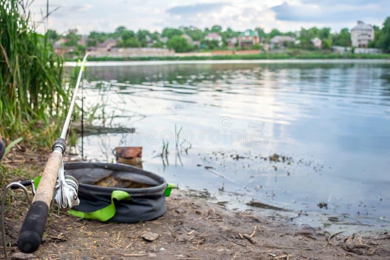 Conducteur et sac de canne à pêche sur la berge avec les roseaux ea de vert photographie stock libre de droits