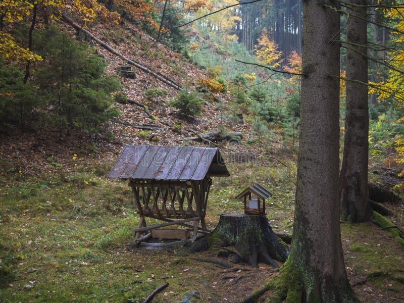 Conducteur ou mangeoire en bois pour les animaux sauvages dans la cuvette d'alimentation de forêt avec le foin pour les sangliers image stock
