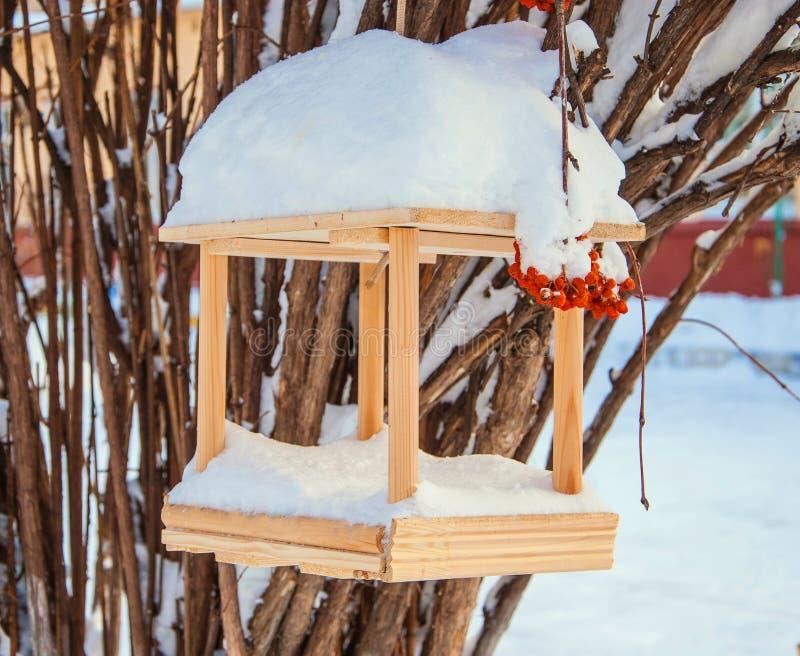 Conducteurs d'oiseau photographie stock libre de droits