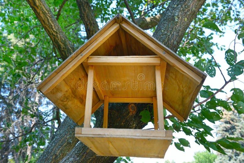Conducteurs pour des oiseaux en parc de ville photo libre de droits