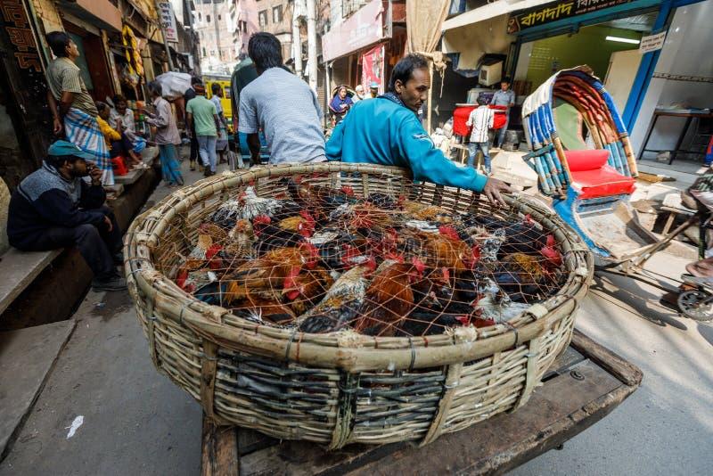Conductor del carrito en las calles apretadas de Dacca en el Bangladesh imagen de archivo