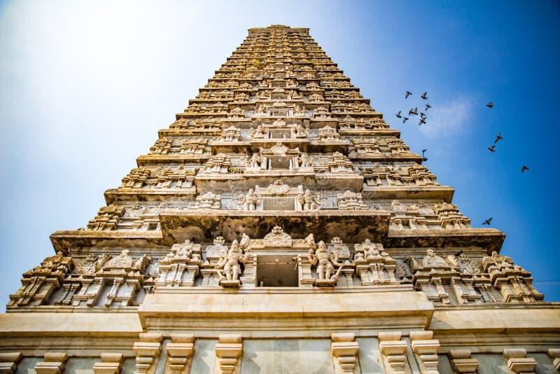 A conduit des colombes par le temple photos libres de droits