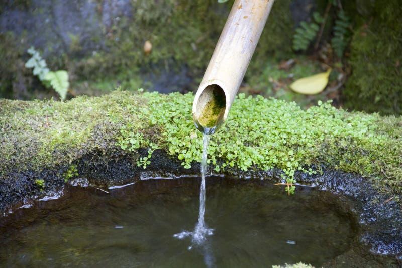 Conduite d'eau dans le jardin japonais images libres de droits